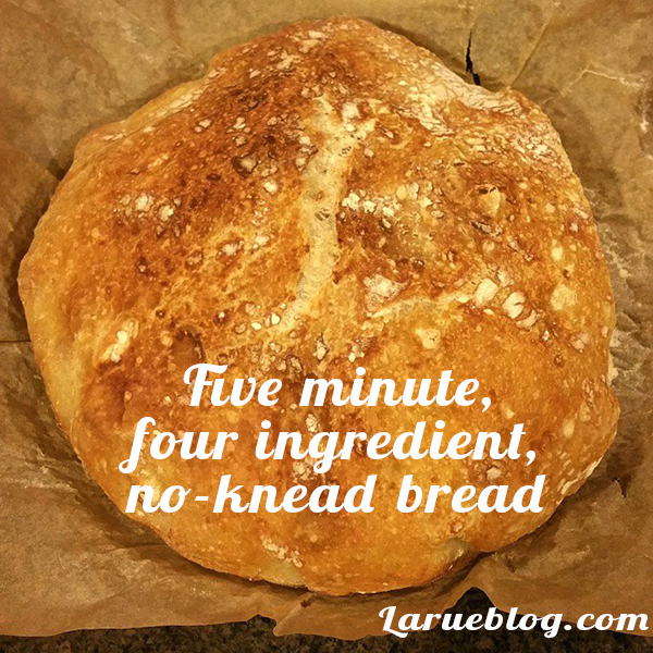 five minute, four ingredient, no-knead bread